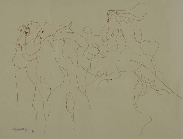 Horses at the Fair